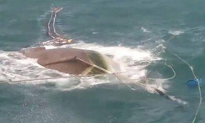 Cà Mau: Tàu cá bất ngờ bị sóng đánh chìm, 3 ngư phủ mất tích