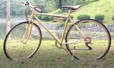 Cận cảnh chiếc xe đạp mạ vàng 9999, có giá cả trăm triệu đồng
