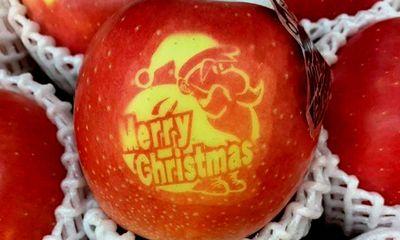 Xôn xao táo Giáng sinh độc lạ có giá 500 nghìn/quả