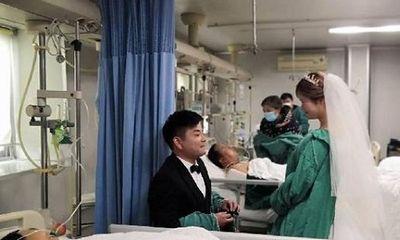 Đám cưới của đôi trẻ trong phòng điều trị đặc biệt và câu chuyện xúc động lòng người