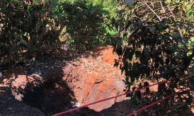 Điều tra vụ vợ phát hiện chồng chết cháy bí ẩn trong vườn tiêu ở Bình Phước