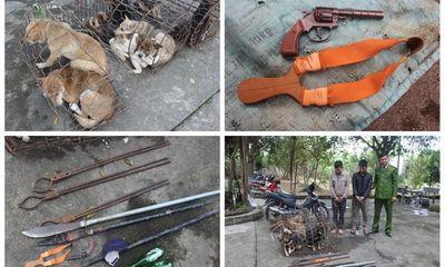 Tin tức pháp luật mới nhất ngày 5/1/2020: Bắt nhóm trộm chó chém công an bị thương