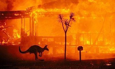 Hơn 180 người bị xử phạt vì các hành vi gây ra cháy rừng ở Australia