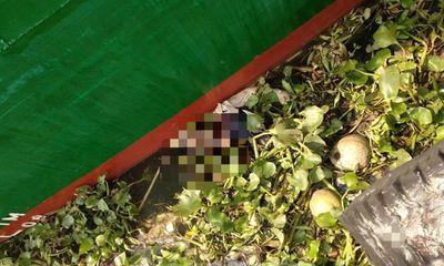 Đi câu cá, phát hiện thi thể người phụ nữ trôi trên sông Sài Gòn