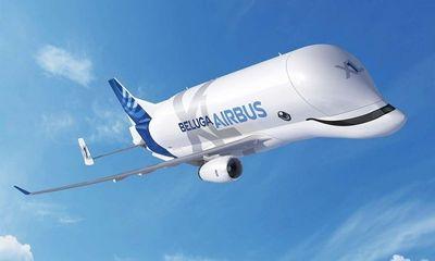 """""""Cá voi bay"""" Beluga XL của """"gã khổng lồ"""" Airbus chính thức được đưa vào hoạt động"""
