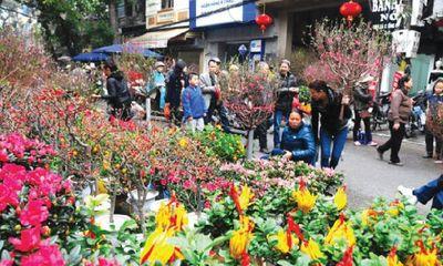 Chợ hoa Tết và thú chơi hoa
