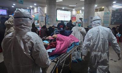 Tình hình dịch virus corona ngày 18/2: 73.348 ca nhiễm Covid-19, 1.868 người tử vong