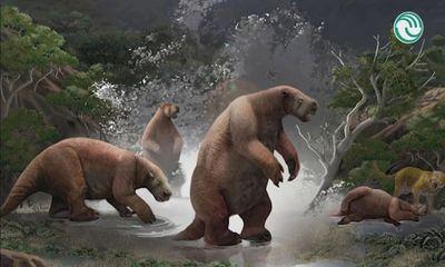 Phát hiện hóa thạch 'người tuyết Nam Mỹ' có móng vuốt dài tới 2 mét