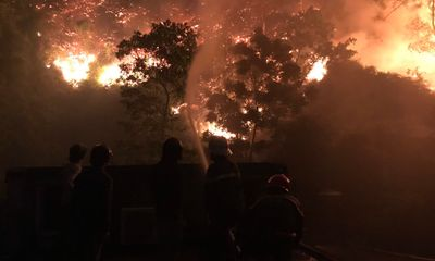 Đốt thực bì gây cháy rừng, lão nông ở Hà Tĩnh bị phạt 90 triệu đồng và buộc phải trồng lại rừng