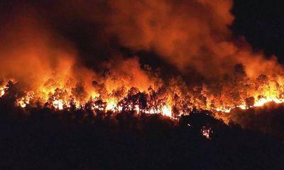 Tin tức pháp luật mới nhất ngày 22/3/2020: Đốt thực bì gây cháy rừng, người đàn ông bị phạt 90 triệu đồng