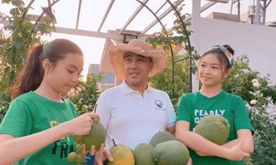 Quyền Linh khoe clip thu hoạch trái cây nhưng cư dân mạng chỉ chú ý đến nhan sắc 2 cô
