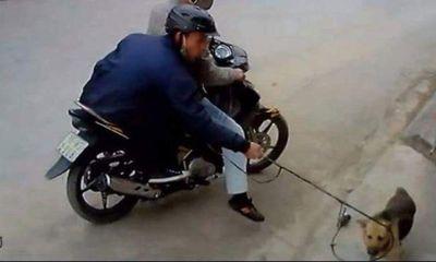 Vụ nghi trộm chó, giết người ở Ninh Bình: Bắt 2 đối tượng