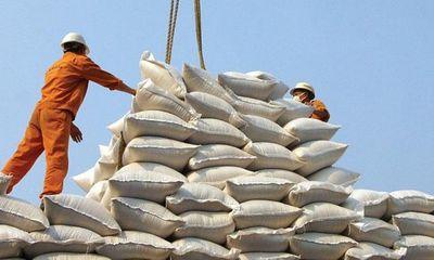 Vụ mở tờ khai xuất khẩu gạo lúc nửa đêm: Lộ dấu hiệu bất thường