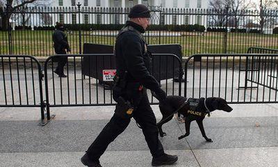 Phát hiện 11 nhân viên mật vụ Mỹ nhiễm Covid-19