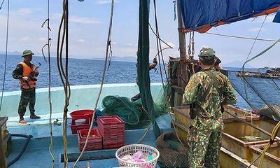 Nổ súng truy bắt tàu giã cào khai thác trái phép trên biển Hà Tĩnh