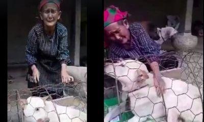 Xúc động cảnh cụ bà H'Mông bật khóc khi phải bán chó, thanh niên vượt 140km tặng lại