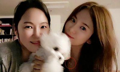 Rầm rộ chuyện Song Hye Kyo lộ bằng chứng tái hợp cùng Hyun Bin