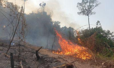 Giám đốc ban Quản lý rừng phòng hộ gián tiếp gây cháy rừng
