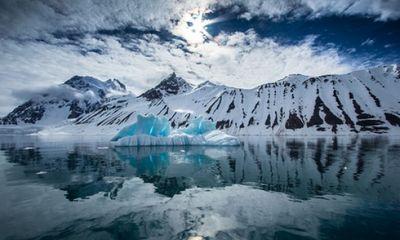 Video: Cận cảnh cuộc sống làm bạn với băng giá và cá biển ở Bắc Cực