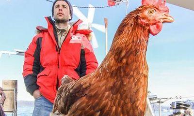 Chàng trai cùng gà mái du lịch khắp 5 châu, minh chứng