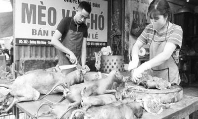 Cuộc vận động không ăn thịt chó: Bao giờ mới đến hồi kết?