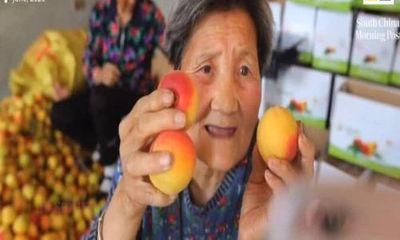Video: Bà 80 tuổi live stream bán hàng,