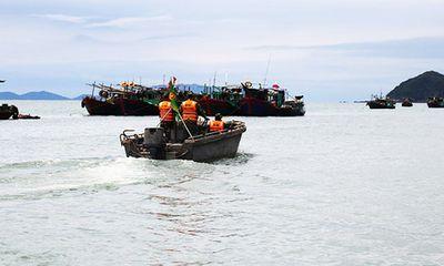 Ban chỉ đạo 389 quốc gia yêu cầu kiểm soát xuồng cao tốc Trung Quốc trên vùng biển Quảng Ninh