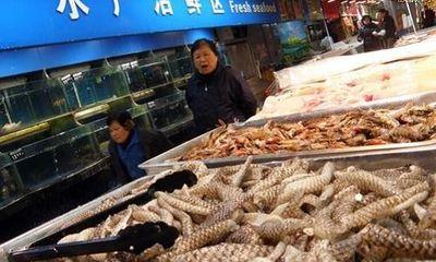 Trung Quốc xác định nguồn lây nhiễm chính ở chợ đầu mối Bắc Kinh
