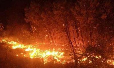 Hàng nghìn người tham gia dập đám cháy rừng lan rộng ở Nghệ An