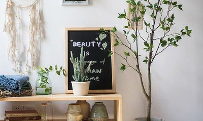 Không cần tinh dầu, ngôi nhà vẫn thơm mát nhờ trồng những cây này
