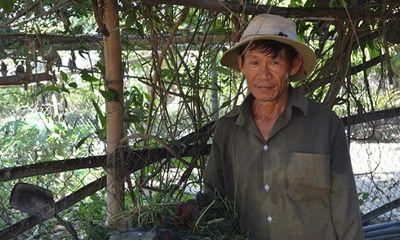 Thu nhập bấp bênh, lão nông Quảng Ngãi vẫn cần mẫn giúp đỡ người nghèo