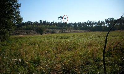 Đĩa bay UFO xuất hiện giữa ban ngày ở Ba Lan