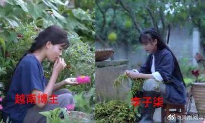 Lý Tử Thất Việt Nam bị nghi đạo nhái ý tưởng, netizen xứ Trung chỉ trích sau khi xem video