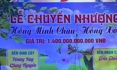 Sự thật bất ngờ về cây lan đột biến hồng minh châu có giá 1.400 tỷ đồng gây xôn xao mạng xã hội