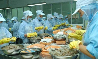 Hiệp định EVFTA: Bệ phóng giúp doanh nghiệp Việt Nam