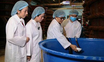 Agribank Phú Quốc tiếp sức giữ gìn thương hiệu quốc gia