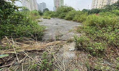 """Hà Nội: Yêu cầu kiểm tra, xử lý dự án """"ôm"""" đất vàng rồi bỏ hoang"""