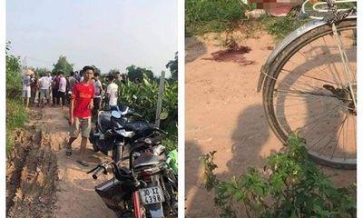 Hà Nội: Điều tra vụ chồng đâm chết vợ ngoài cánh đồng ngô rồi về nhà tự sát