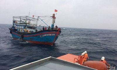 Tàu câu mực bị tàu lạ đâm chìm, 1 người mất tích