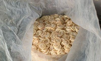 Bắt quả tang nữ 8X gom gần 4 tạ bao cao su đã sử dụng về tái chế: Bí ẩn