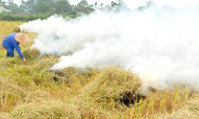 """Bảo vệ môi trường Hà Nội: Kịch bản nào """"giải cứu"""" nạn đốt rơm?"""