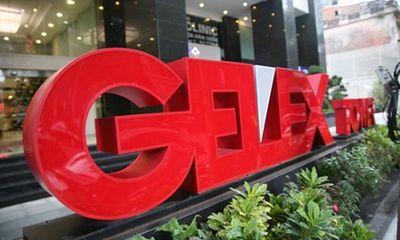 Gelex chi 2.223 tỷ mua 95 triệu cổ phiếu VGC, nâng sở hữu lên 46,07% vốn tại Viglacera