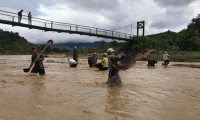 Video: Hàng trăm người, có cả trẻ 13-14 tuổi đổ xô đãi vàng ở sông Đắk Broai