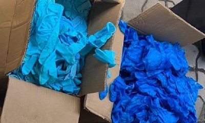Giám định hơn 1.000 thùng găng tay cao su bẩn, không nhãn mác
