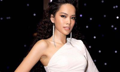 Top 10 Hoa hậu Hoàn vũ Việt Nam 2019 Lê Hoàng Phương khiến fan trầm trồ vì quá