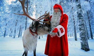 Vì sao ông già Noel dùng tuần lộc đi tặng quà?