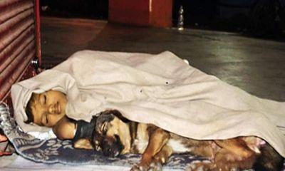 Bố đi tù, mẹ bỏ rơi, cậu bé vô gia cư sống cùng chú chó cưng khiến triệu trái tim tan chảy