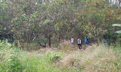 Vụ thi thể phân hủy trên ngọn cây ở Bình Phước: Người dân địa phương hé lộ tình tiết bất ngờ