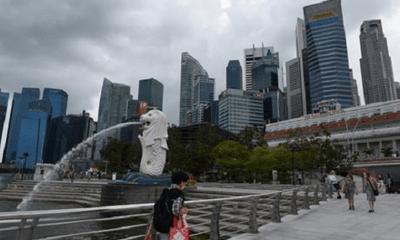 Singapore phát hiện hơn 10 trường hợp đầu tiên dương tính với virus SARS-CoV-2 biến thể