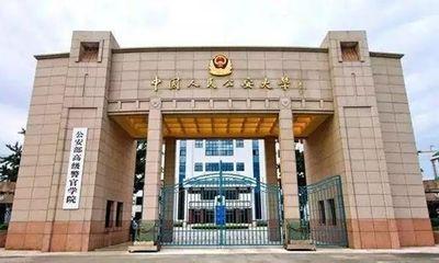 Sinh viên Trung Quốc nuôi mộng thành viên chức không thể bỏ qua 3 nhóm ngành này